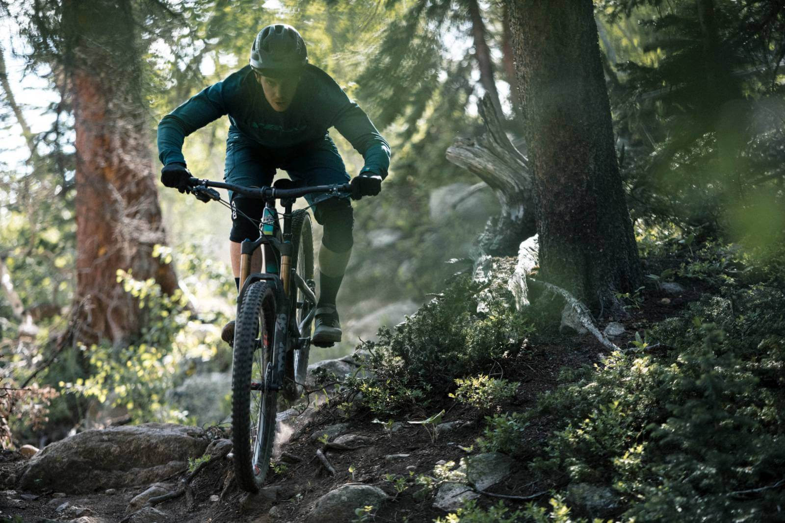 Bikes für deine Hometrails!